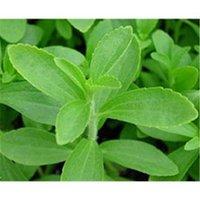does stevia raise blood sugar