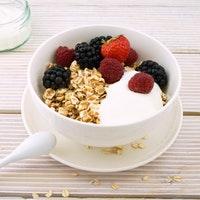 Fortified Yogurt May Benefit Obese Adults