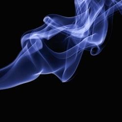 Genetic Obesity Linked to Smoking